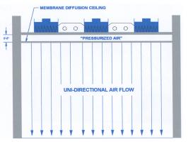 Membrane Diffusion